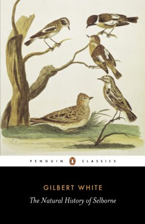 The Natural History of Selborne By (author) Gilbert White ISBN:9780140431124