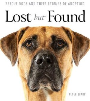 Lost But Found By (author) Peter Sharp ISBN:9781760786090