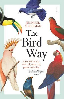 The Bird Way By (author) Jennifer Ackerman ISBN:9781925713763